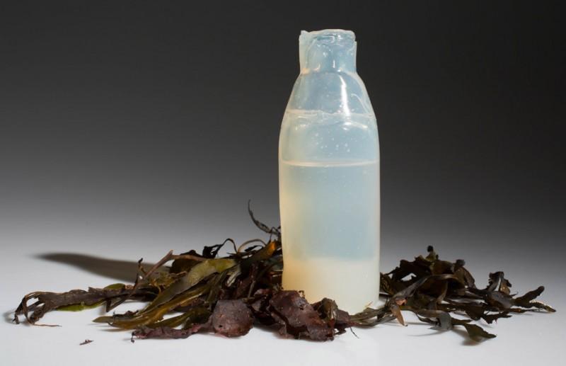 Agar-Agar como alternativa al plástico